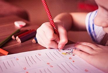 Csodabogár Gyermekfejlesztő Felmérések
